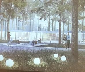 В Воронеже презентовали проект реконструкции парка «Дельфин»