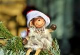 Главный Дед Мороз России приедет в Воронеж 17 декабря