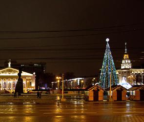 В Воронеже на площади Ленина установили елку и новогодние конструкции - фото