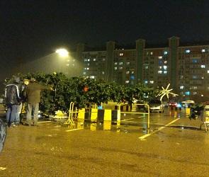 В Воронеже возле торгового центра упала искусственная ель