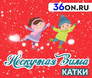 Катки Воронежа — расписание 2017-2018