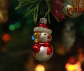Воронежцев просят не приводить на новогодние праздники заболевших детей