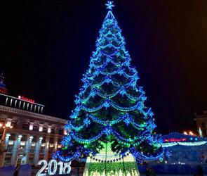 В Воронеже на Новый год продлят движение автобусов и усилят меры безопасности