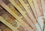 В Воронежской области парень украл у пенсионерки больше миллиона рублей