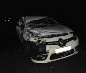 Появились фото ДТП с фурой и иномаркой на воронежской трассе, ранена женщина