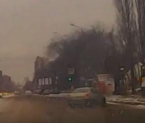 В Воронеже сняли видео с неуправляемой машиной, летящей в остановку