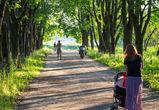 В Воронеже может появиться аллея Нобелевских лауреатов и памятник Дурову