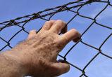 Пять лет тюрьмы может получить житель Борисоглебска, укравший тушку утки