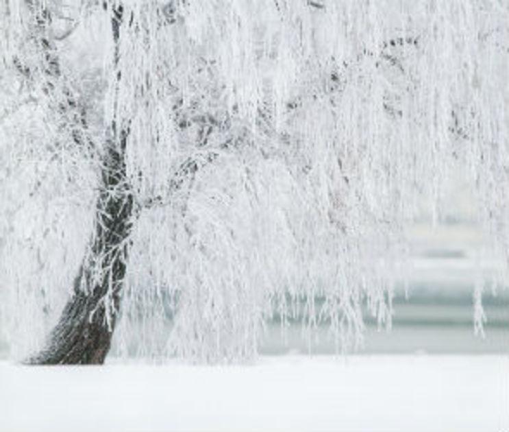 На Старый Новый год синоптики обещают воронежцам сильные морозы
