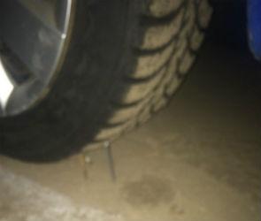Воронежцев предупредили о неизвестных, подкладывающих гвозди под колеса машин