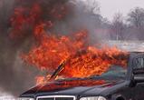 Воронежского подростка судят за серию поджогов дорогих автомобилей