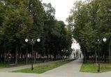 Воронежский парк «Орленок» получил статус особо охраняемой природной территории