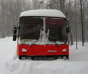 Ночью на трассе под Воронежем из-за поломки автобуса чуть не замерзли 16 человек