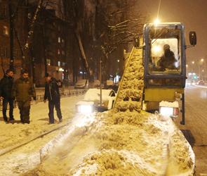 В Воронеже снег убирают под личным присмотром временного мэра (фото)