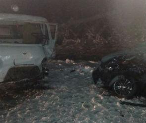 Трое взрослых и двое детей пострадали в массовом ДТП под Воронежем