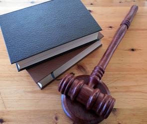 В Воронеже судят владельца Мицубиси, насмерть сбившего на переходе девушку