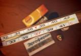 Заболеваемость ОРВИ в Воронежской области за неделю выросла на 8%