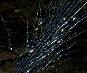 На воронежской трассе ВАЗ врезался в дерево: водитель погиб, пассажир ранен