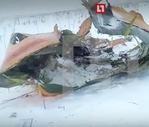 В Подмосковье разбился воронежский самолет