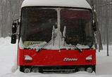 Под Воронежем из сломанного автобуса эвакуировали замерзавших взрослых и детей