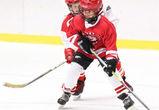 Воронежцев зовут на бесплатные занятия по хоккею и катанию на коньках