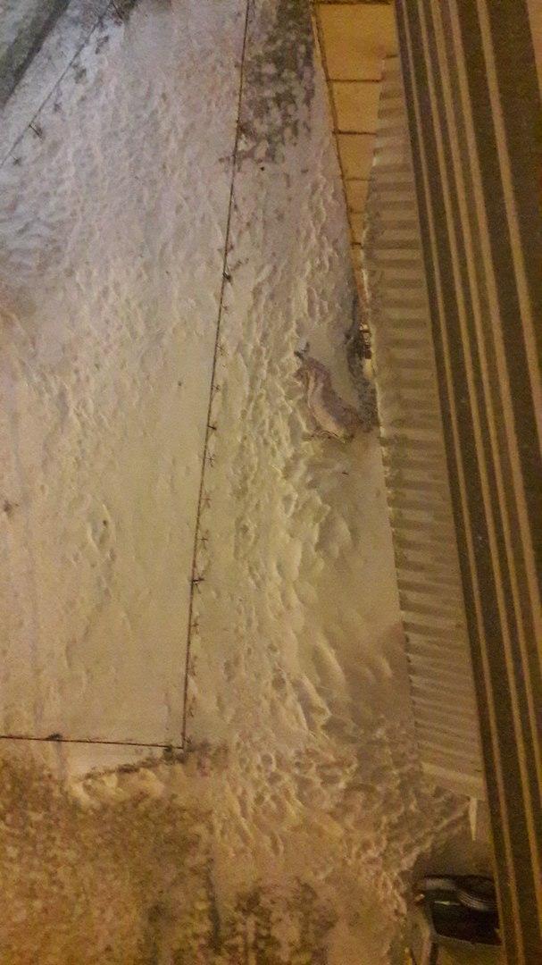 В Воронеже мужчина погиб, выпав с 12 этажа