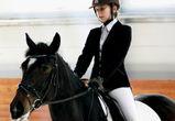 10 и 11 марта в Воронеже пройдет турнир по конному спорту