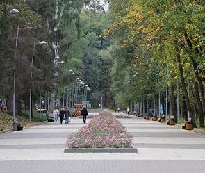 Воронежец предложил создать в бывшем парке «Динамо» роликовую горку