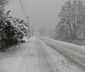 Спасатели предупредили воронежцев о снегопаде и гололеде