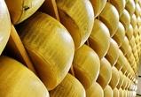 Под Воронежем появится сырный завод