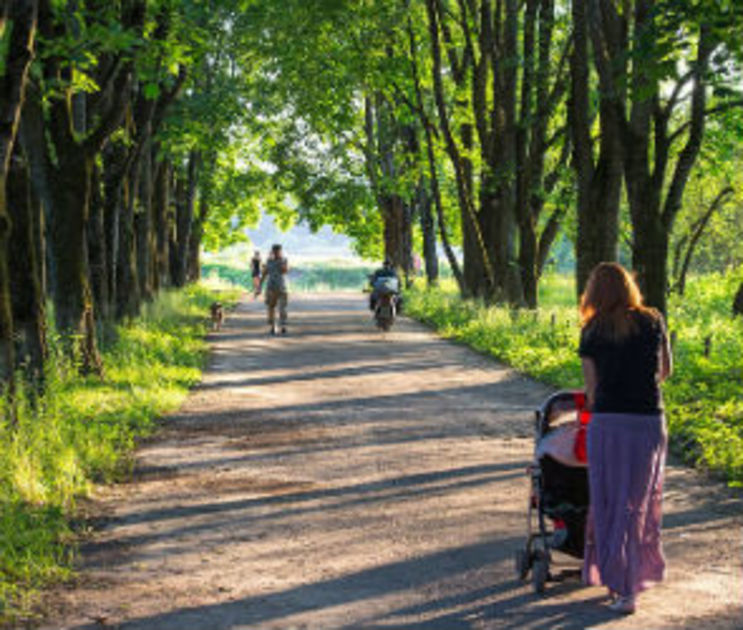 Стало известно, какое общественное пространство благоустроят в Воронеже в 2018-м