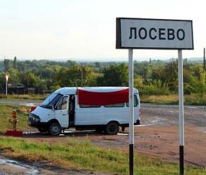 Воронежскую трассу М-4 в обход Павловска и Лосево вновь пообещали сдать досрочно