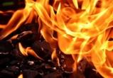 В Воронеже двое сотрудников управы спасли пожилую женщину из горящего дома