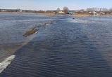 На видео попали затопленные мосты в воронежском селе, где объявили режим ЧС