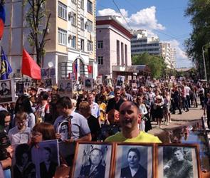Воронежцев приглашают встать в ряды «Бессмертного полка» в День Победы 9 Мая