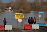 Семь мостов ушло под воду в Воронежской области