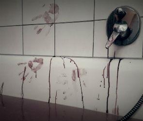 В квартире на улице Чебышева нашли тело зарезанной женщины