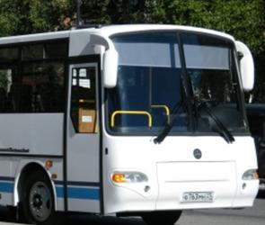 Стоимость проезда в воронежских автобусах может вырасти до 25 рублей