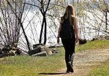 Выходные в Воронеже будут ясными и солнечными