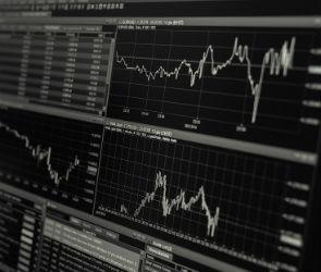 В Воронежской области прогнозируют снижение объема инвестиций