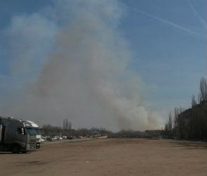В Воронежской области за сутки зафиксировали 97 ландшафтных пожаров