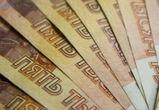 Директора воронежской школы поймали на коррупции