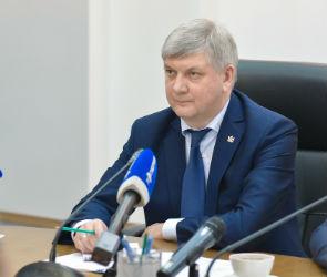 Александр Гусев хочет перестать быть врио губернатора Воронежской области