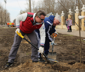 Вадим Кстенин поблагодарил воронежцев, участвовавших в уборке и озеленении
