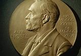 В честь воронежских нобелевских лауреатов около ВГУ создадут аллею арт-объектов