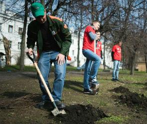 В Воронеже посадили росток легендарного волгоградского «Тополя Победы»