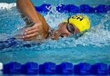 В Воронеже появятся новый 50-метровый бассейн и другие спортивные объекты