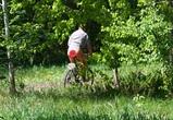 Воронежцы сфотографировали в яблоневом саду велосипедиста-эксгибициониста