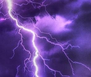 Из-за грозы и сильного ветра в Воронеже объявлен «желтый уровень» опасности