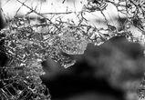 В Воронежской области пьяная девушка перевернулась на угнанной машине
